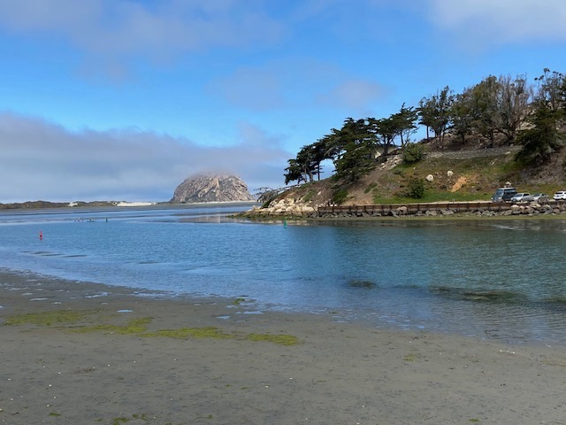 3cps July 2021 paint out in Morro Bay,