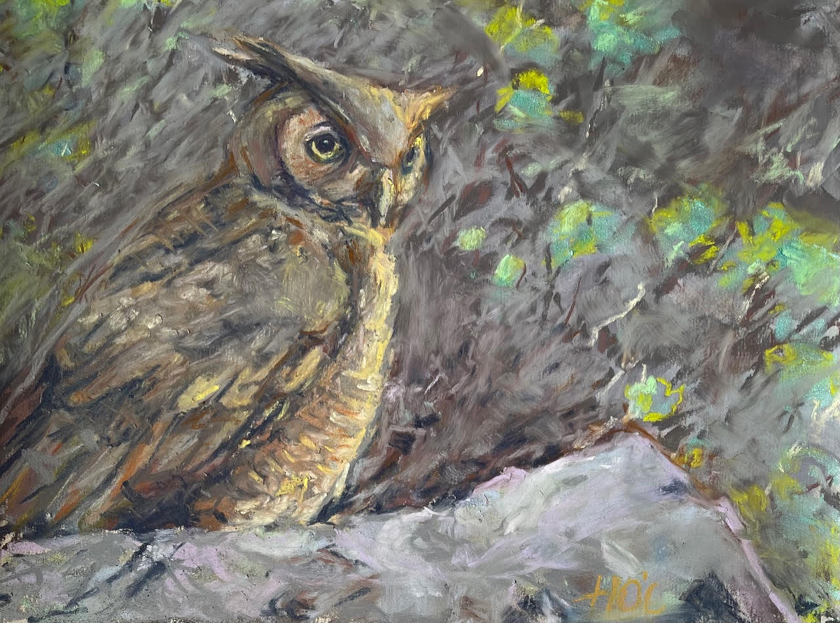 Heather O'Connor, Great-horned Owl, 9x12, $280